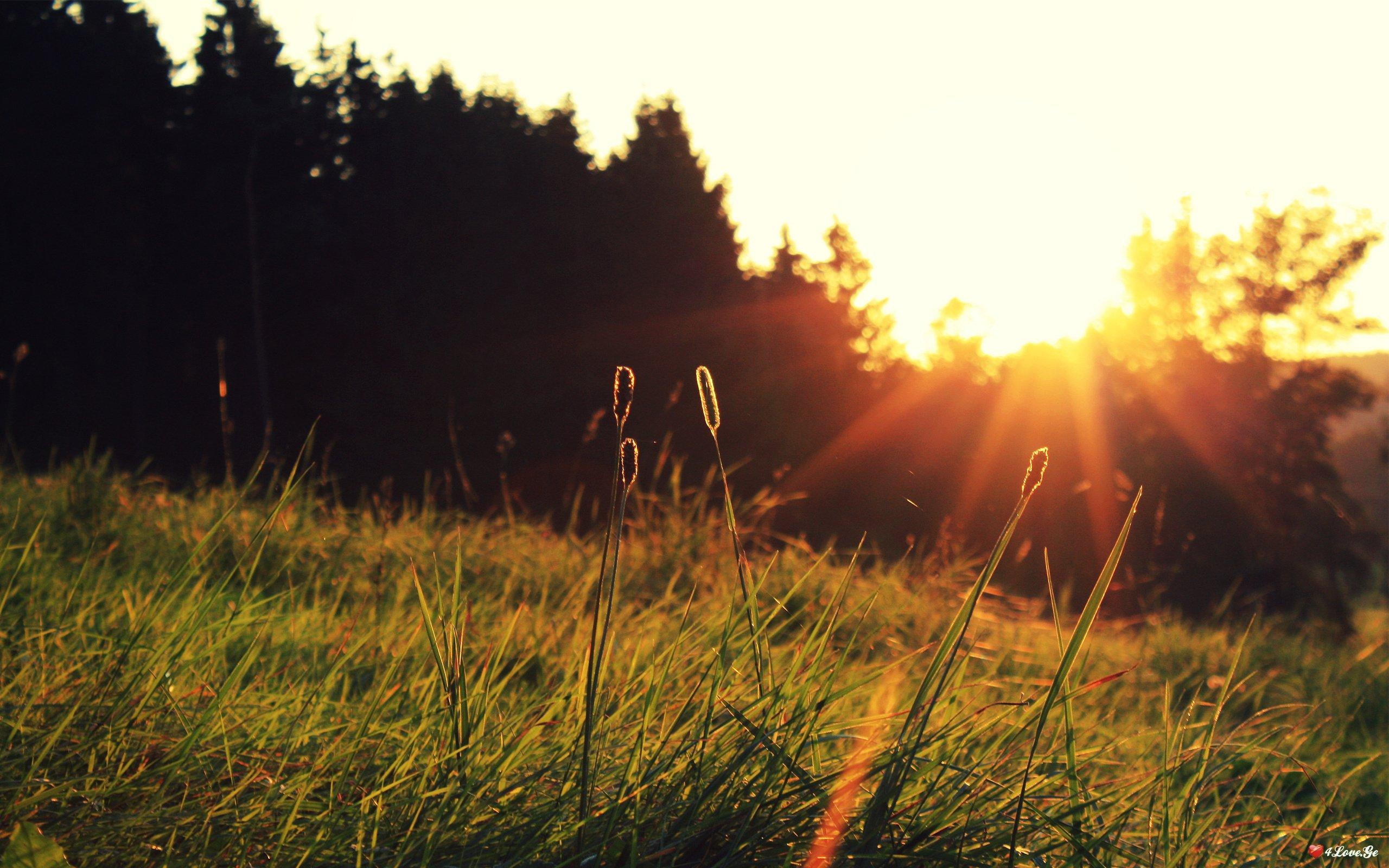 ტესტი - აირჩიე მზის ჩასვლის პეიზაჟი და გაიგე, რა არის თქვენთვის ცხოვრებაში ყველაზე მნიშვნელოვანი