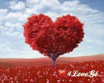 მე და სიყვარული