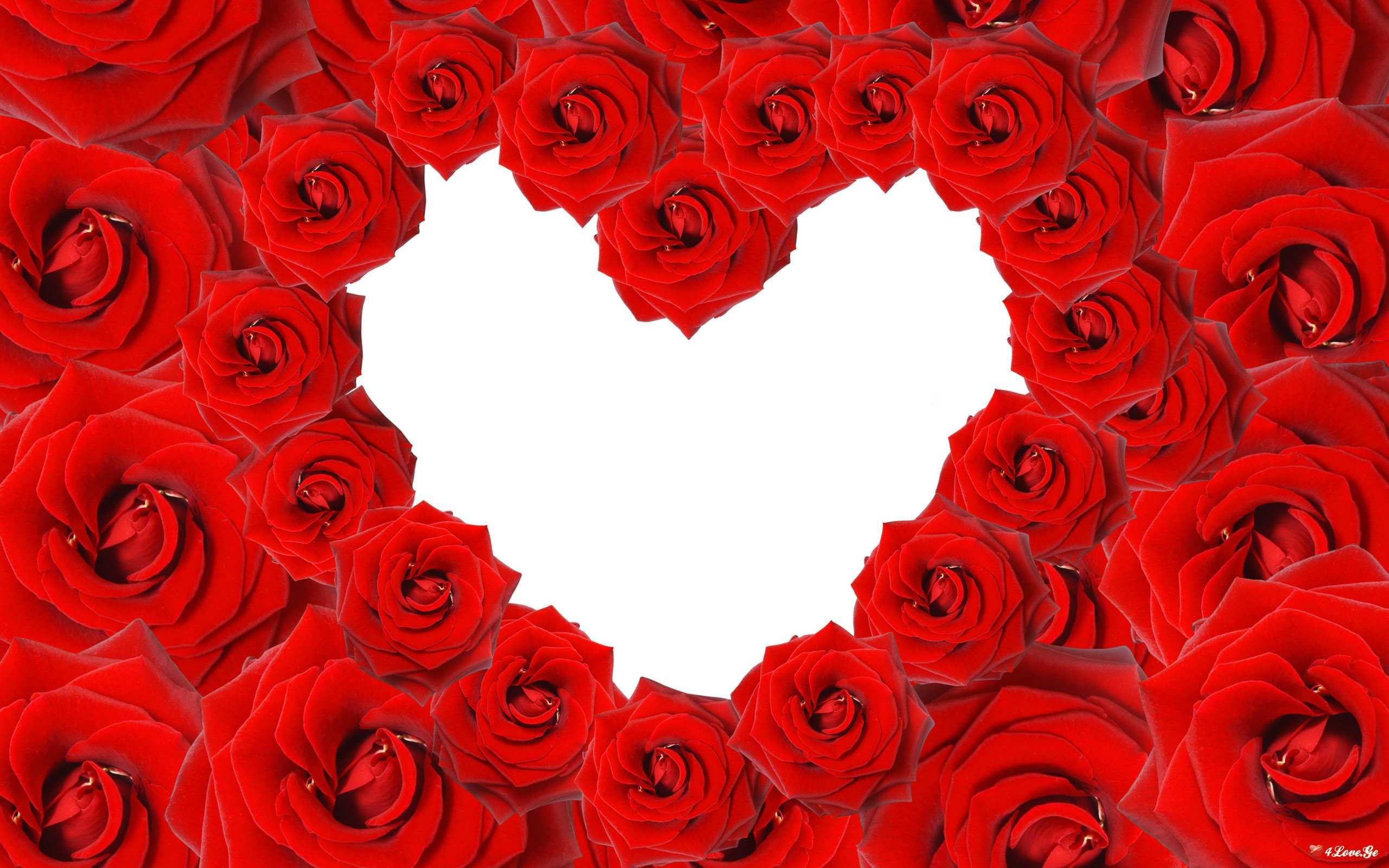 სიყვარულის  უარმყოფელი(ნაწილი7)