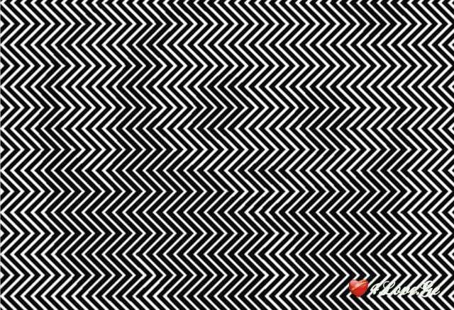 ოპტიკური ილუზია - რას ხედავთ სურათის უკან? (დააკვირდით ფოტოს )