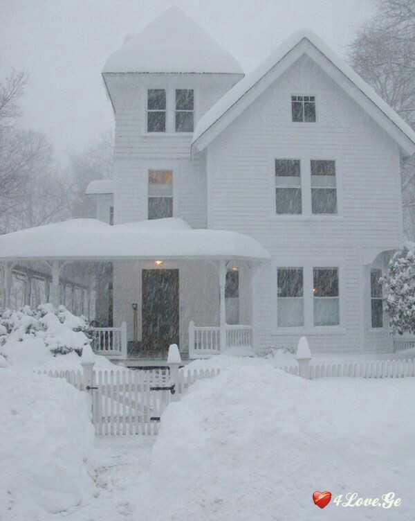 თეთრი სახლი ( თავი 3)