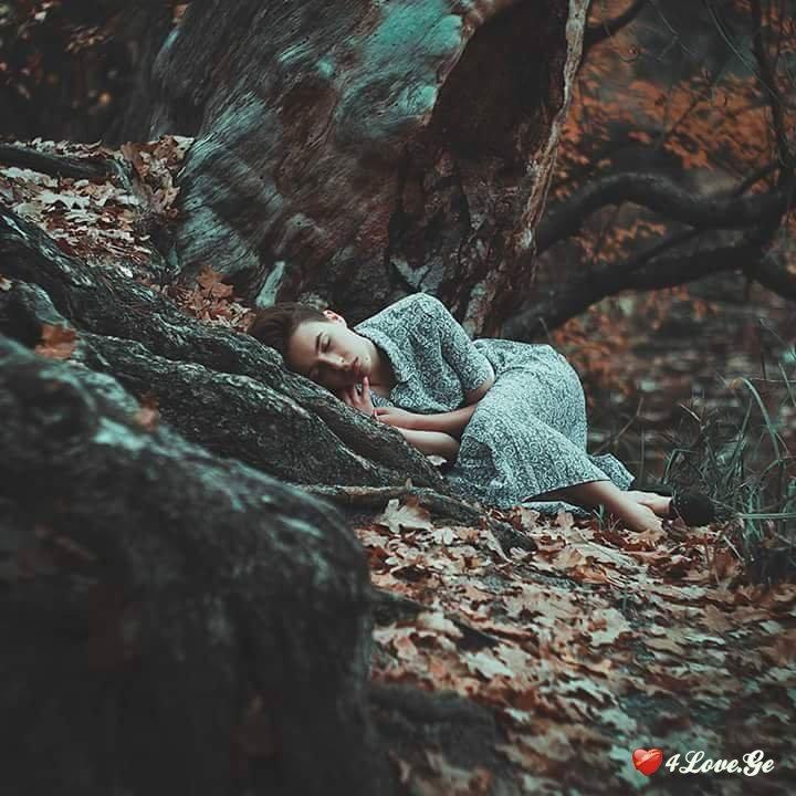 ტყის საიდუმლოება (თავი მეორე)