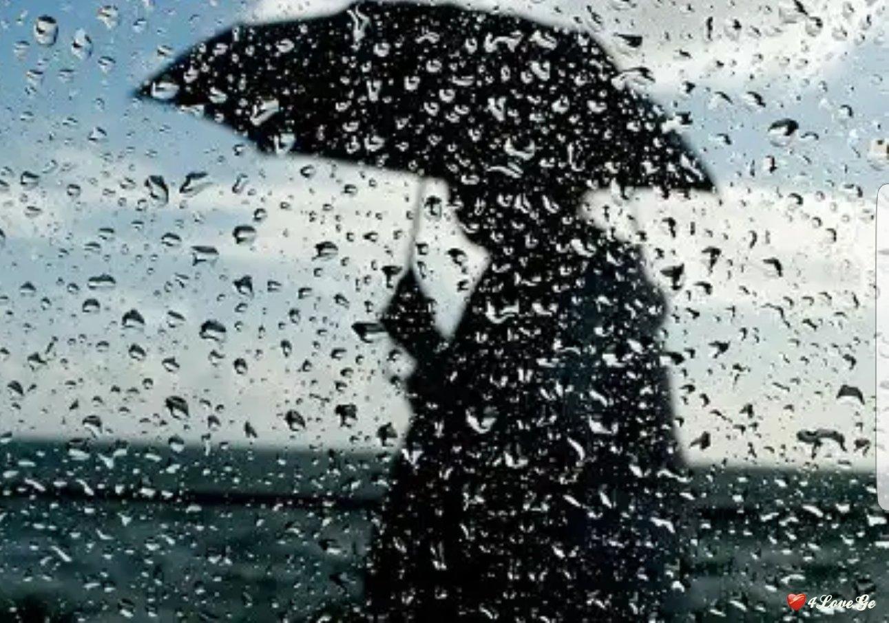 მოდის ნისლი მოდის წვიმა