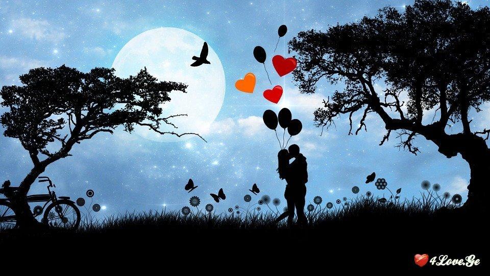 სიყვარულს ვეძებდი...