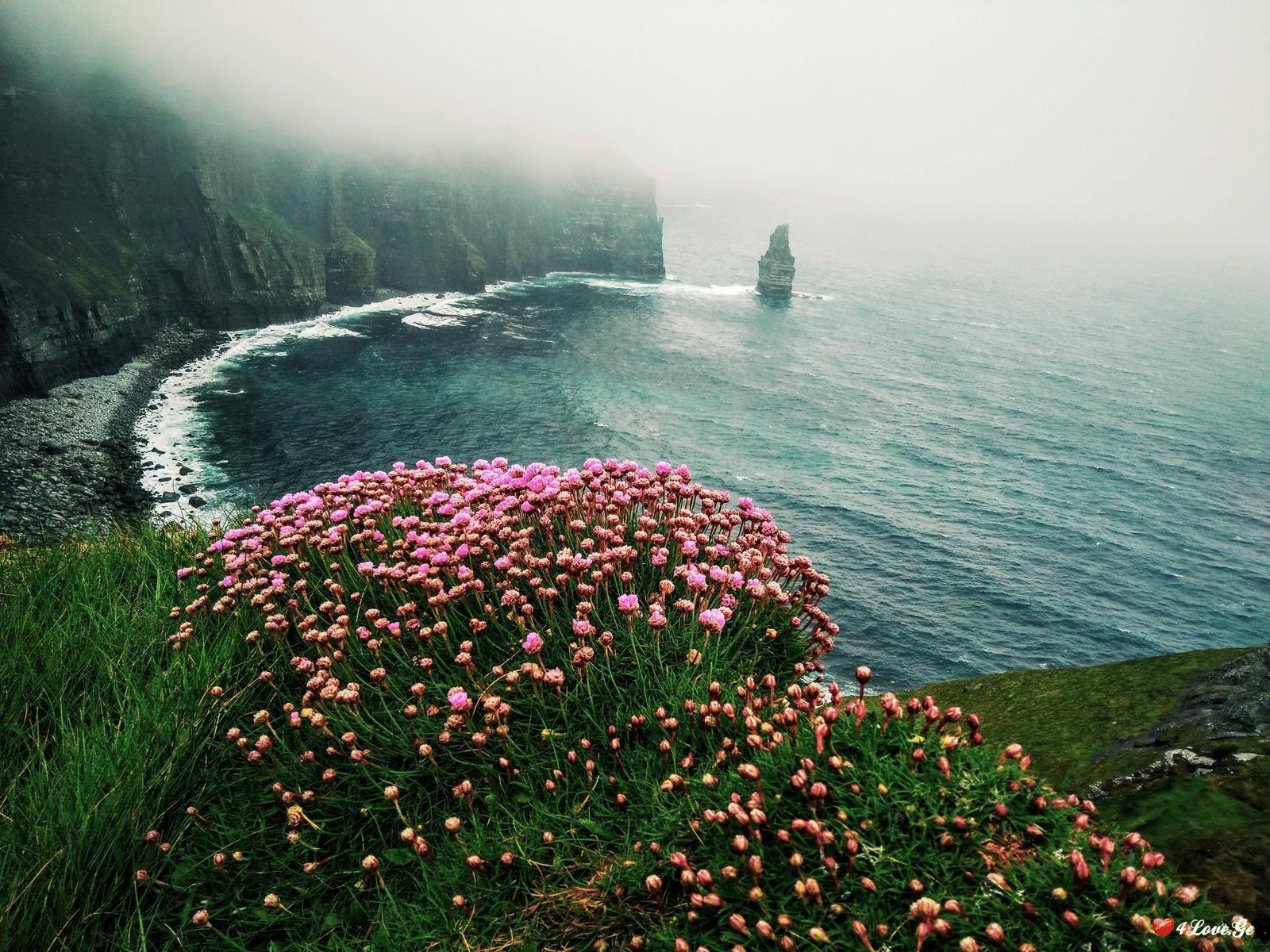 ღვთაება ირლანდიიდან (ნაწილი1)